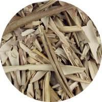 Oliwny-liść-rebalife