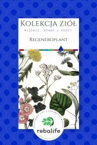 regeneroplant zioła dla sportowców mieszanki ziołowe, rebalife Karta produktu Pracownia ziół i zdrowej żywności Rebalife