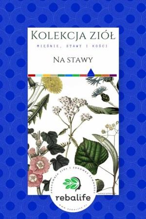 zioła na zdrowe stawy etykiety, mieszanki ziołowe, rebalife Karta produktu Pracownia ziół i zdrowej żywności Rebalife-41