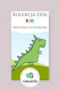 herbatka dla dzieci etykiety, mieszanki ziołowe, rebalife Karta produktu Pracownia ziół i zdrowej żywności Rebalife-61