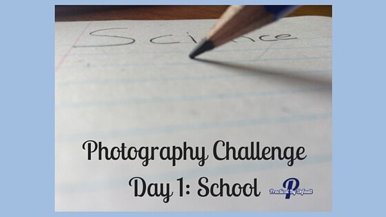 Day 1 of SchoolhousTeachers.com Photo Challenge. Sharing our Review
