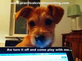 puppy peering over a laptop illustrating an article with time management tips