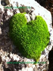 green-mossy-heart