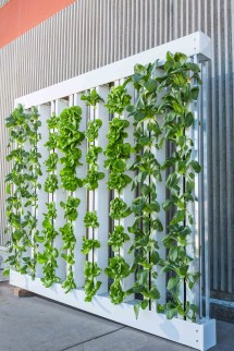 Create Vertical Garden Home