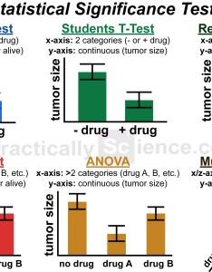 Image infographic choosing  statistical test also biology rh reddit