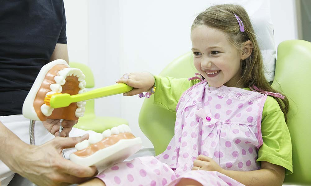 Young female dental patient brushing large model teeth with large toothbrush