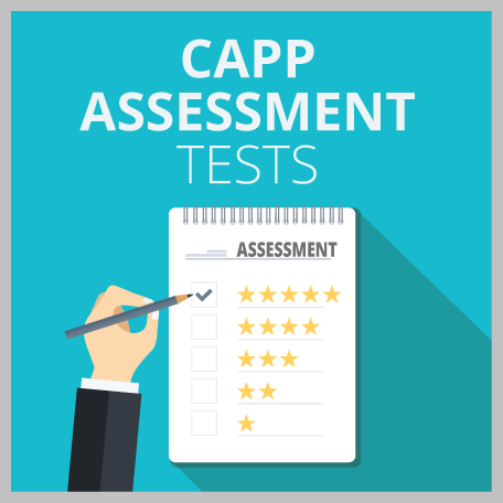 Capp Assessment Tests: Numerical, Verbal + Critical Reasoning