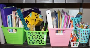 Craft bins to separate supplies