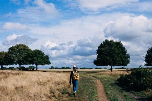 Mindfulness Agenda