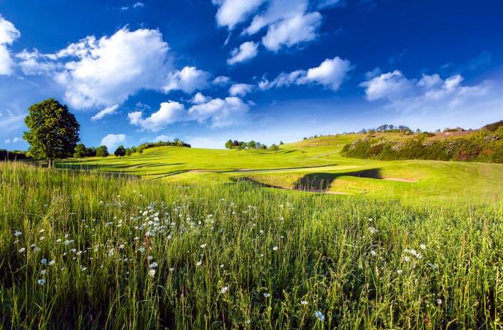 Blick zum 11. Grün bei strahlend blauem Himmel im Golfclub Praforst