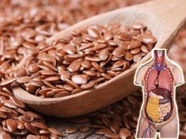 Flax Seeds in Telugu