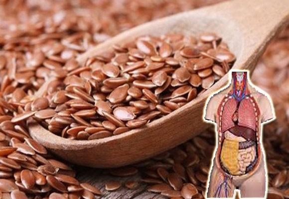 Flax Seeds in Telugu