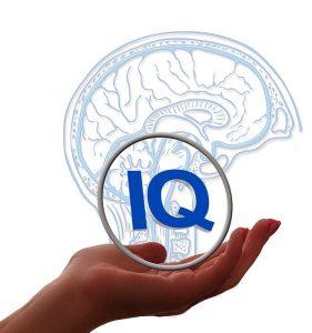 Praktijk de hoofdzaak - IQ test