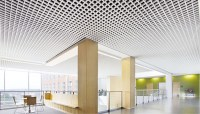 perforated 75x75 Brazil Open Cell Ceiling | PRANCE