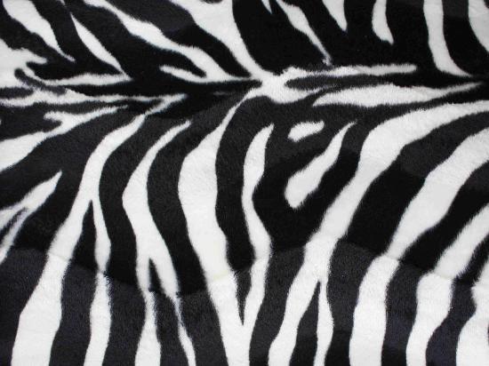 Nuova collezione di tessuti SafariPratelliSedieit