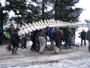 Moving the Gray Whale