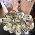 homer brew oysters