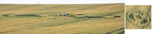 kornkreis-ukraine-juni-2013