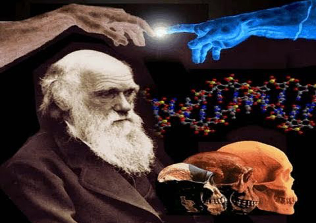 darwin-evolution-irrtum