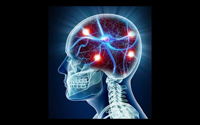 Wundermittel B12: Massnahmen gegen Alzheimer und mehr | PRAVDA TV ...