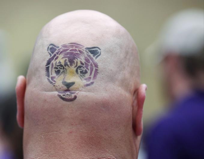 С юмором по жизни Лысый тигр