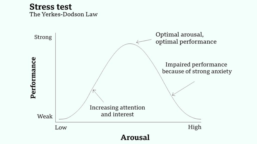 Stress Yerkes Dodson Law