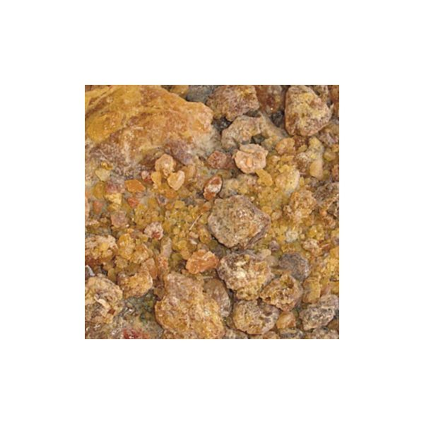Myrrhe Weihrauch - Omumbiri aus Namibia