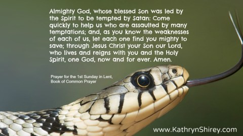 Prayer for the 1st Sunday in Lent