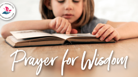 Daily Prayer for Wisdom