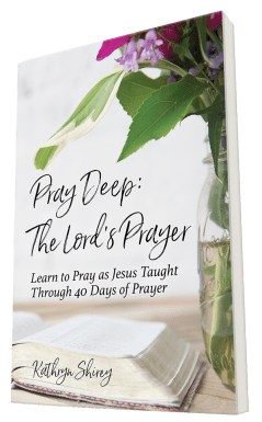 Pray Deep: The Lord's Prayer - printed book devotional