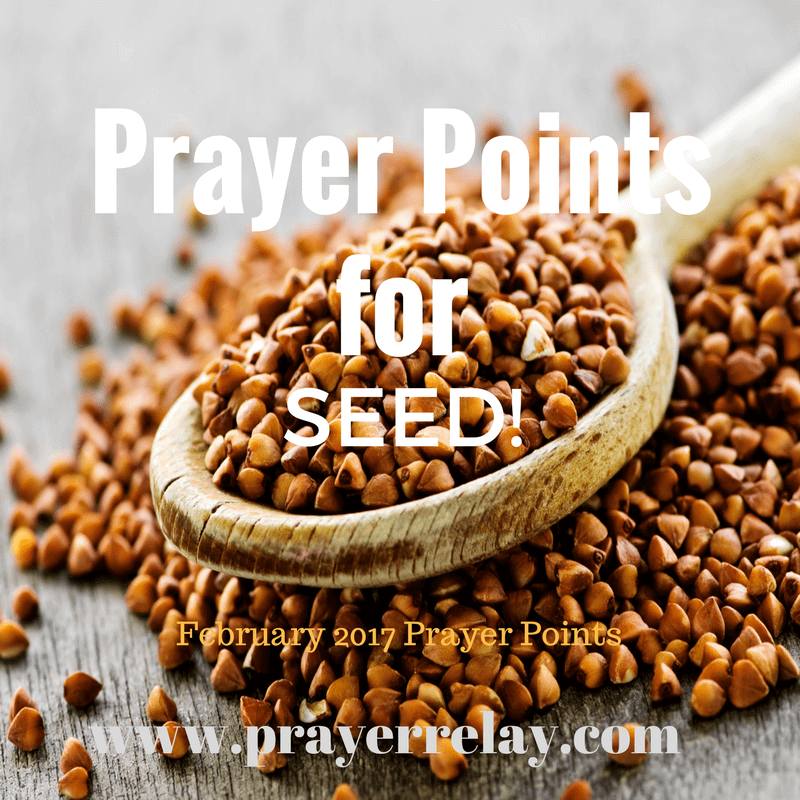 Prayer Points for seed: prayer for seed sowing