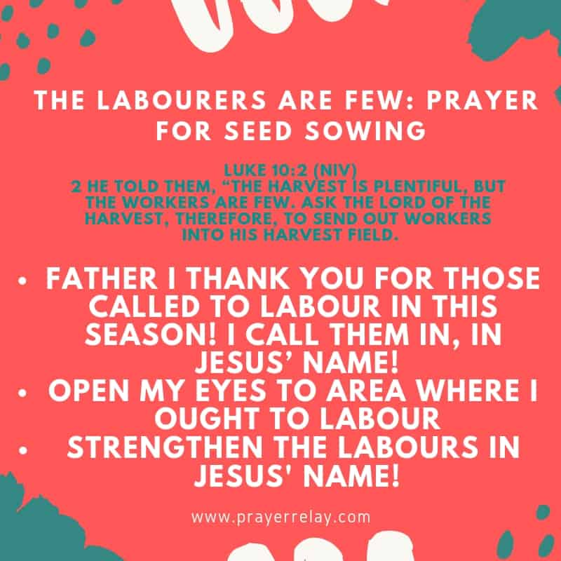 THE LABOURERS ARE FEW_ PRAYER FOR SEED SOWING