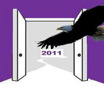 2011 eagle flight