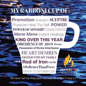 RABBONI CUP