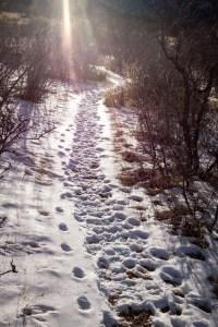 Bear Creek Regional Park, Colorado Springs, Colorado