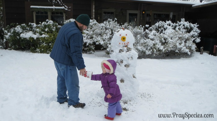 "Recipe for a Snowman with ""Stranger in the Woods"" {Book and Activity}"