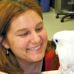 So You Want to Be a Veterinarian? – An Elementary Guide to Veterinary Medicine for Career Day