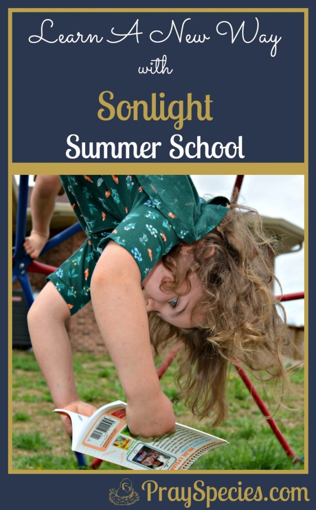Looking for a fun and relaxing way to keep kids learning all summer long? Try Sonlight Summer School!