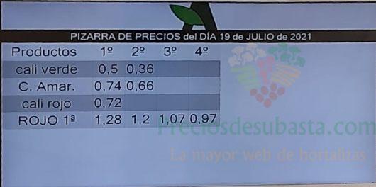 Subasta hortofrutícola Agrodolores El Mirador 19 de julio 2021