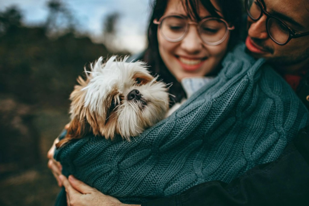 How to protect your dog from COVID-19