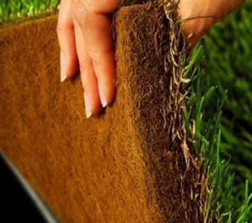 formulated hydroponic grass