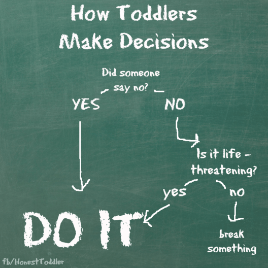 how toddlers make decisions