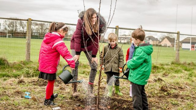 a Woman helping 4 children plant a tree
