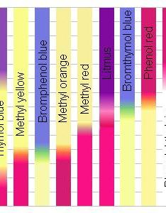 Ph indicator chart also informal experiments how do strips work precision nutrition rh precisionnutrition