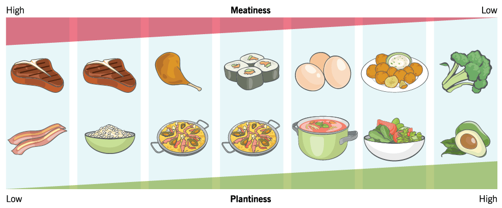 Graphic that shows the variation of plant-based diets, placing foods on a scale from low to high Meatiness of Plantiness.