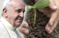 papal ecology
