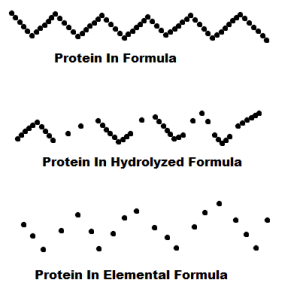 proteins simplified