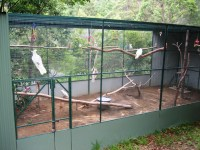 Bird Aviary Plans - Bing images