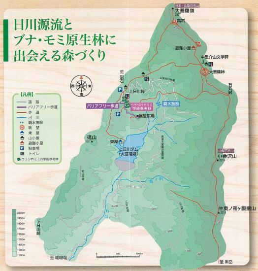 LINK:山梨県/大菩薩の森