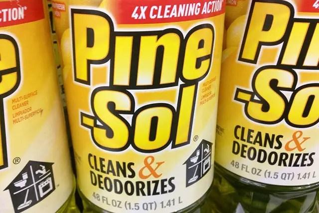 Pine Sol pregnancy test